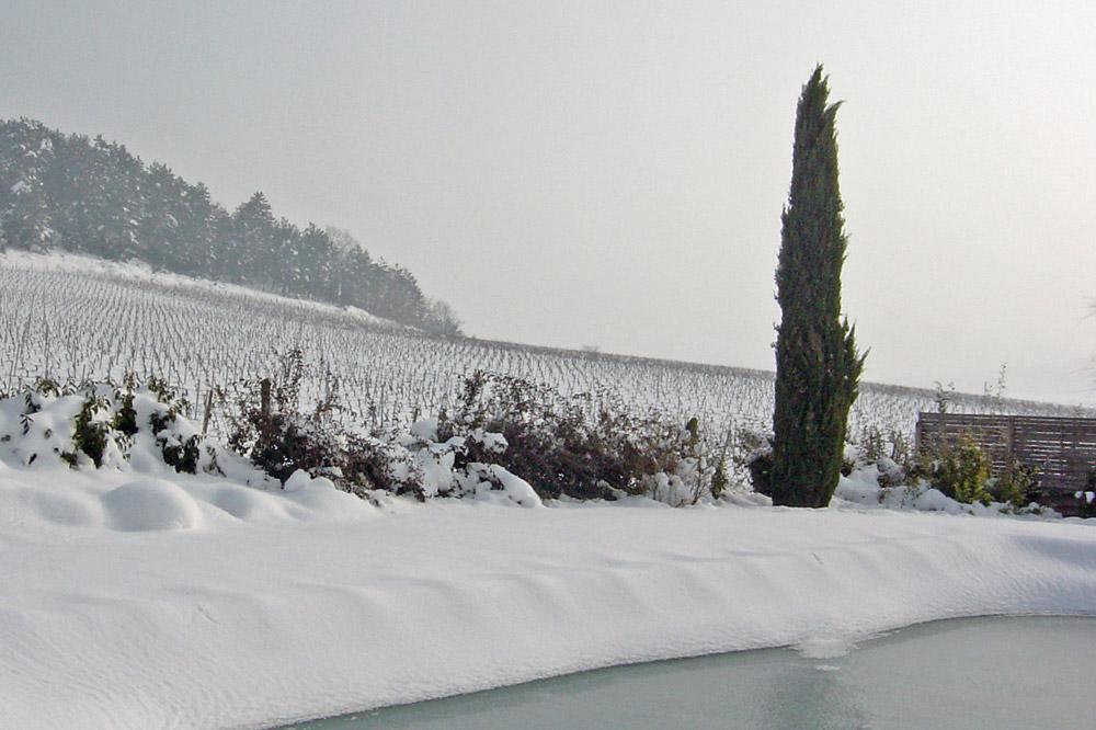 Photographie d'une piscine sous la neige