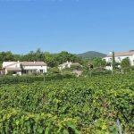 Photographie d'un domaine bordé par les vignobles de l'AOC Clairette de Die