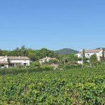 Photographie d'un hameau au milieu des vignes de l'AOC Clairette de Die