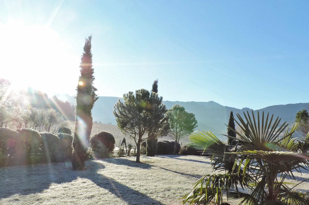 Photographie d'un jardin en hiver ...