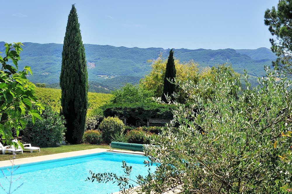 Photographie d'une piscine avec un olivier et un cyprès
