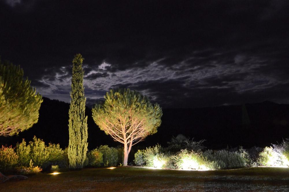 Photographie nocturne d'un jardin