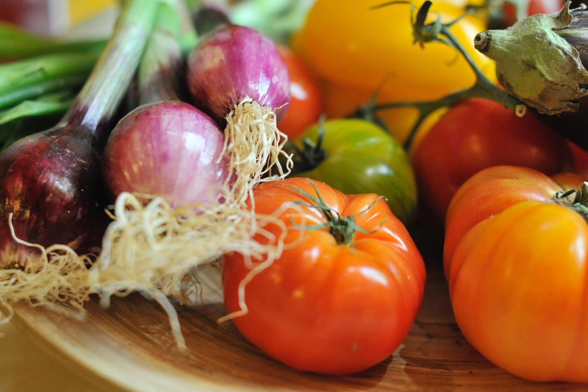 Photographie de légumes Bio dans la Drôme