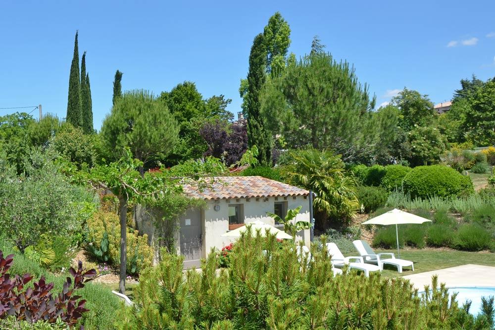 Photographie d'un jardin fleuri avec un olivier