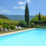 Photographie d'une grande piscine bordée de vignes