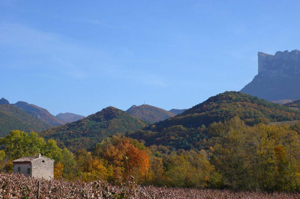Photographie de vignobles à l'automne à Aubenasson dans la vallée de la Drôme