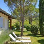 Photographie d'un jardin avec des pins parasols un cyprès et des lavandes