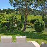 Photographie d'un jardin avec des pins parasols et des Vignes